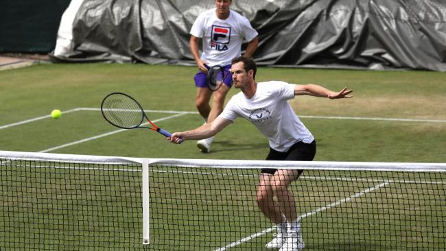 Andy Murray set for return to Wimbledon action