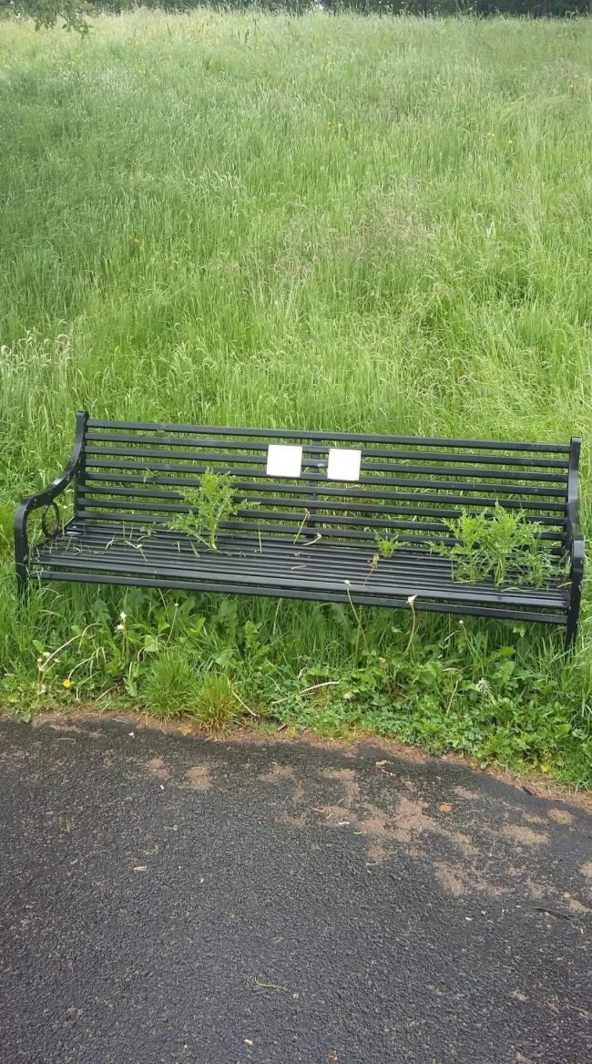Memorial bench in Bellahouston, every one of them were in this condition the other week