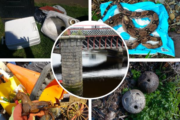 Pulled from the Clyde: Dead snake, Shrek VHS and chemical toilet among items found in River