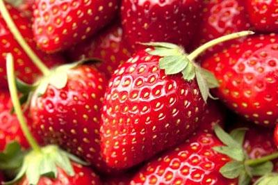 First English strawberries on sale thanks to warm winter