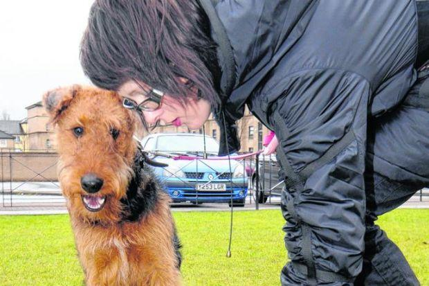 The number of pet owners fined has soared