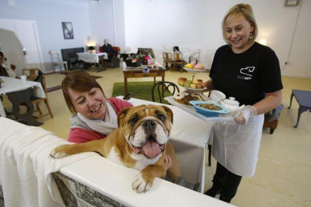 Laura Davies in her  recently opened Dug Cafe - for dogs and their owners - at Lomond Shores. She is servingBulldog Bella with owner Yvonne Rankin from Alexandria.Pictures: Martin Shields