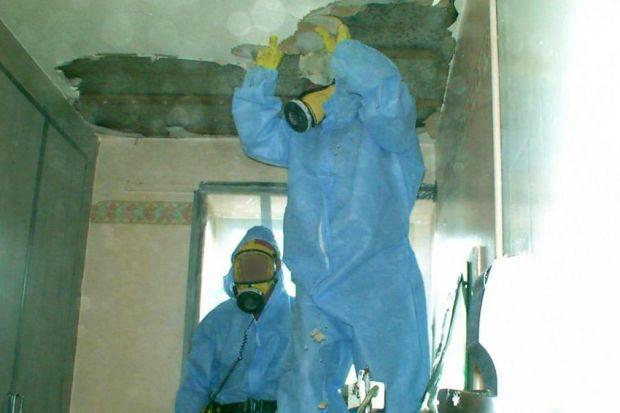 Teams clearing asbestos from a council building in Glasgow - a report had slammed the local authority's record-keeping