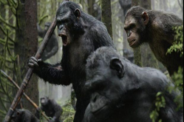 Ten years on from the events of the last movie, the apes live deep in the forest, far away from the surviving humans