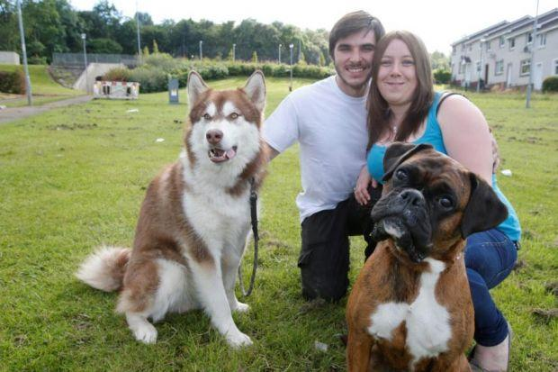 Danielle and Dave tick off one item from the bucket list with a photoshoot with boxer dog Minnie. Picture: Martin Shields