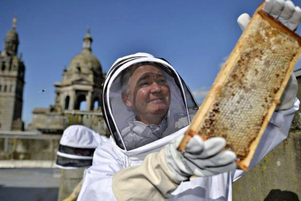 Glasgow City Council leader Gordon Matheson checks out the beehives on the roof.                        Picture: Jamie Simpson