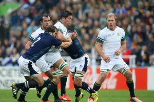 Brown sure Scots can bounce back from Boks beating