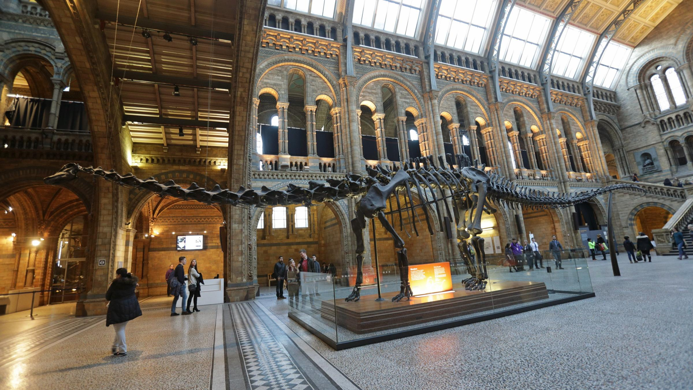 Huge iconic dinosaur skeleton set to begin UK tour for first time - when you can see it in Glasgow
