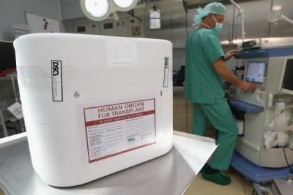 MSPs consider opt-out  bid for organ donation