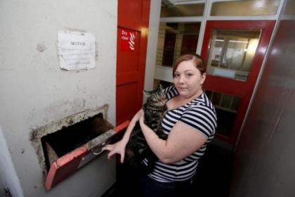 Danielle Rennie found her cat Tigger in one of the bins at the flats in Maryhill  Picture: Martin Shields