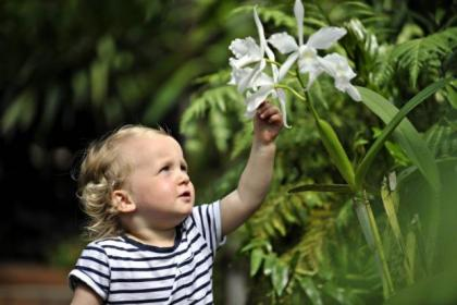 Laila Jacobs, two, admired the garden orchids